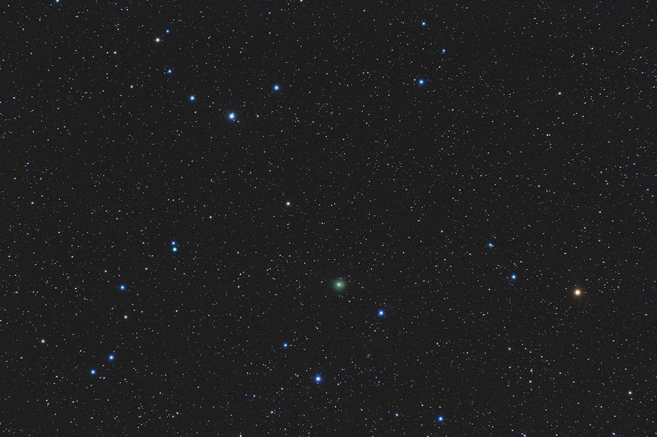 Comète  Comete38pstephanoterma_site_1