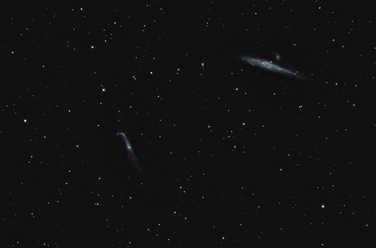NGC 4631 et 5033 Ngc4631et5033_site_1
